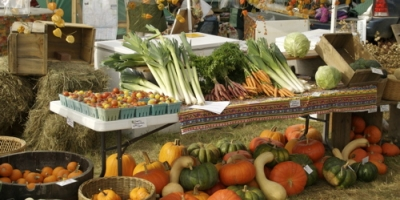 Organic Junk and Inorganic Health